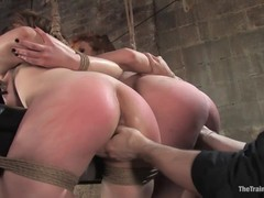 fuck Videos, Hd, Hogtied, Perfect Body Teen Solo, Submission