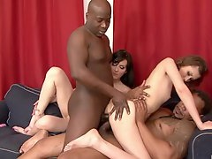 Foursomes, Amateur, Girlfriend Butt Fuck, Home Made Interracial, Unprofessional Aged Pussy, ass Fucked, Double Butt Penetration, Arse Fucked, Assfucking, hot Babes, Buttfucking, Girls Cumming Orgasms, cum Mouth, Cum on Tits, Cumshot, Female Fucked Doggystyle, Double Anal Gangbang, Woman Double Fucking, double, Babes Dp, Two Couples Orgy, Teen Groupsex, Hd, Hot MILF, Milf, ethnic, Interracial Anal, Milf, Milf Anal Sex Amateur, Penetrating, Mature Perfect Body, Riding, tiny Tit, Sperm in Mouth Compilation, Huge Boobs